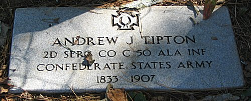 Andrew J Tipton 2D SERG CO C 50 ALA INF Confederate State Army - 1833 - 1907