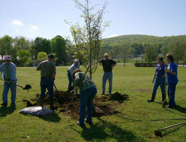 April 2008 Gurley Lions Club helping the citizens of Gurley planting trees in the Charles Stone Walking Park